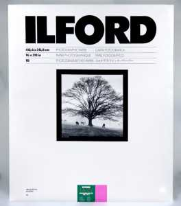 ILFORD MG FB 40x50/10 1K